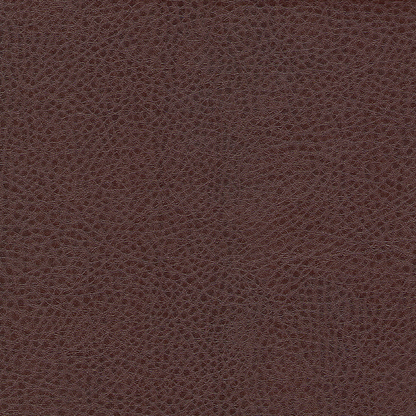 007_sontex_brown.png